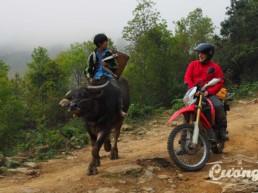 Sapa Loop motorbike tour